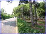 fotos_vila_real_433.JPG