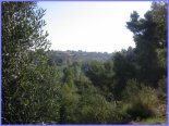 fotos_vila_real_545.jpg